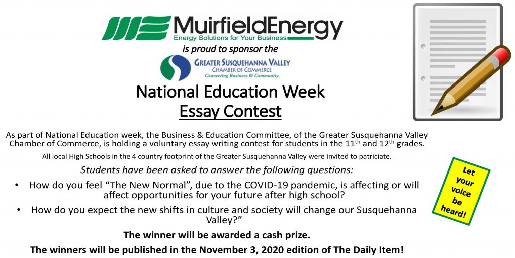 Young Americans - Essay Writing Contest - 2020