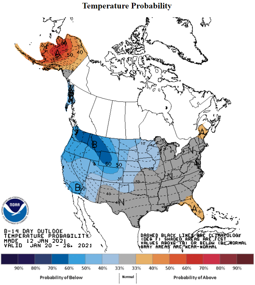 Temperature-Probability-NOAA-January 20, 2021 - January 26, 2021 - 8 to 14 day outlook